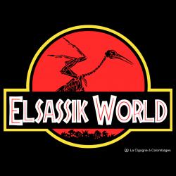 modèle Elsassik World