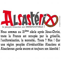 T-shirt Alsastérix, l'irréductible Alsacien